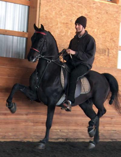 Booyah-saddle