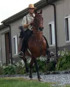 Saddle training